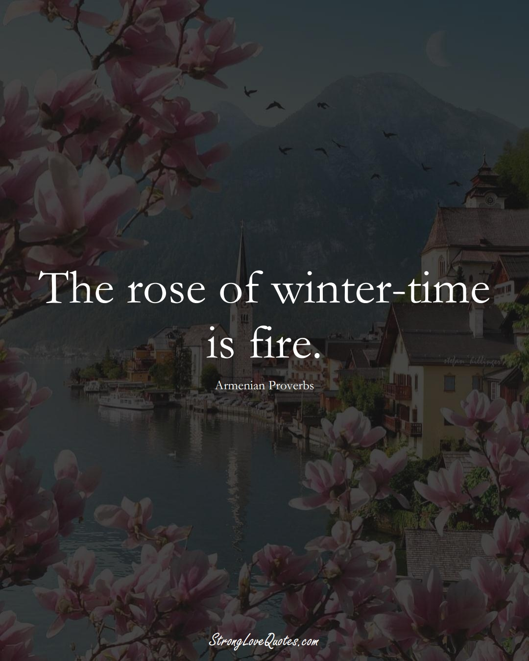 The rose of winter-time is fire. (Armenian Sayings);  #AsianSayings