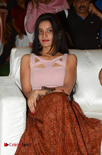 Lakshmi Devi Samarpinchu Nede Chudandi Audio Launch  0008