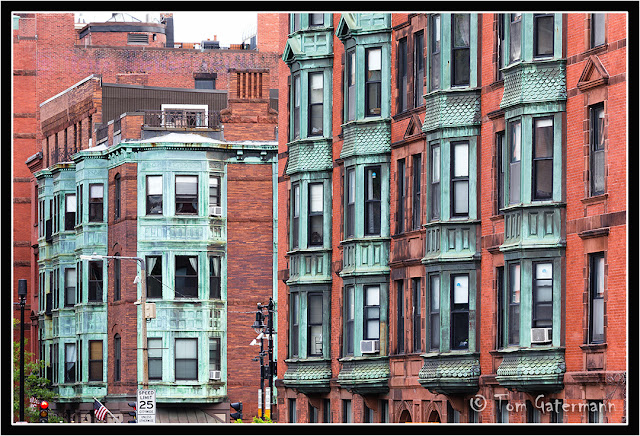 Windows along Massachusetts Avenue in Boston, MA.