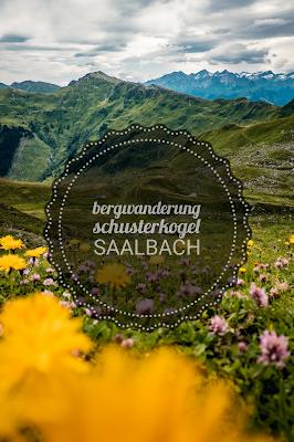 Schusterkogel  Bergwanderung Saalbach  Talschluss Hinterglemm  Wanderung-Saalbach  Wandern-Saalbach SalzburgerLand 21