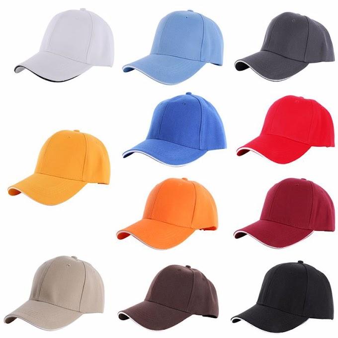 Jenis Topi, Gambar, dan Penjelasan