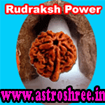 Types of Rudraksh