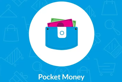 Pocket Money anybuddyhelp