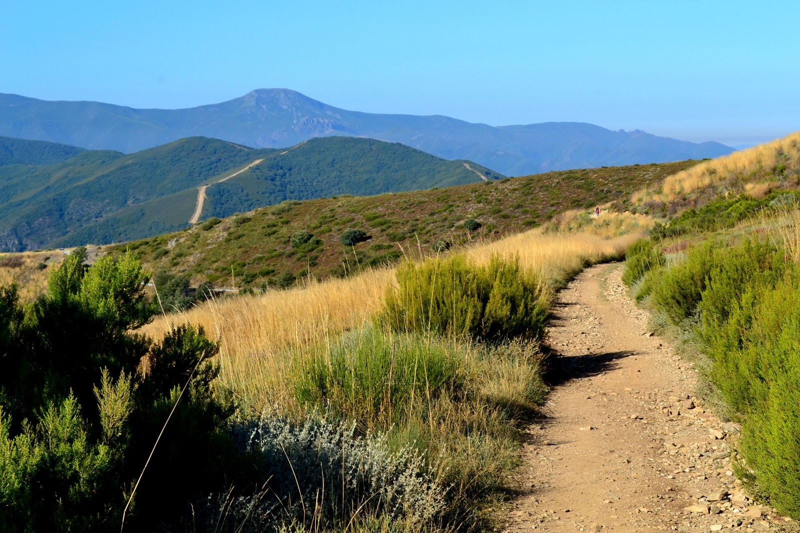 Along the Camino de Santiago. Photo: © EuroTravelogue. Unauthorized use is prohibited.