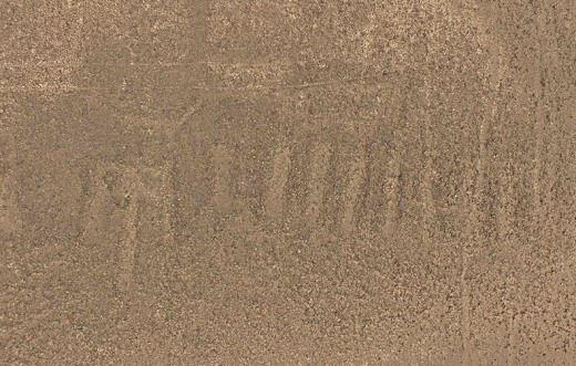 nuevo-geoglifo-nazca-animal-lengua-larga