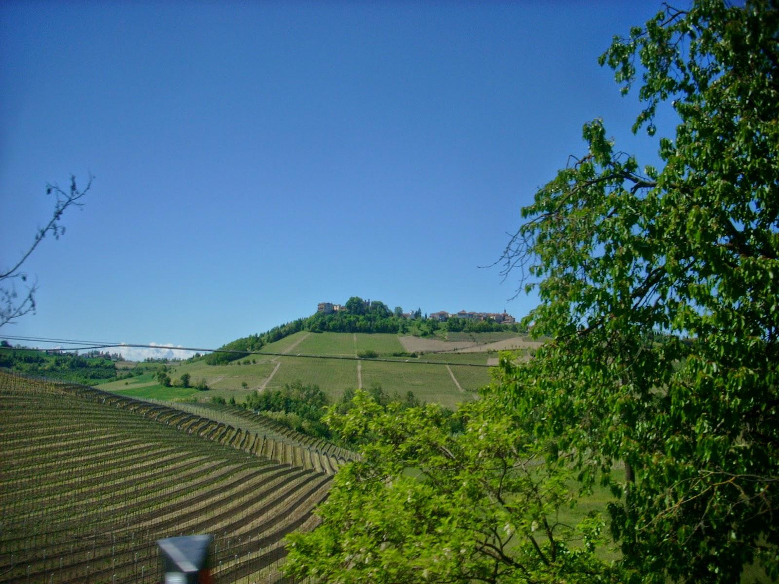 Cuneo e dintorni Colline di Langa Alba Cuneo Barolo
