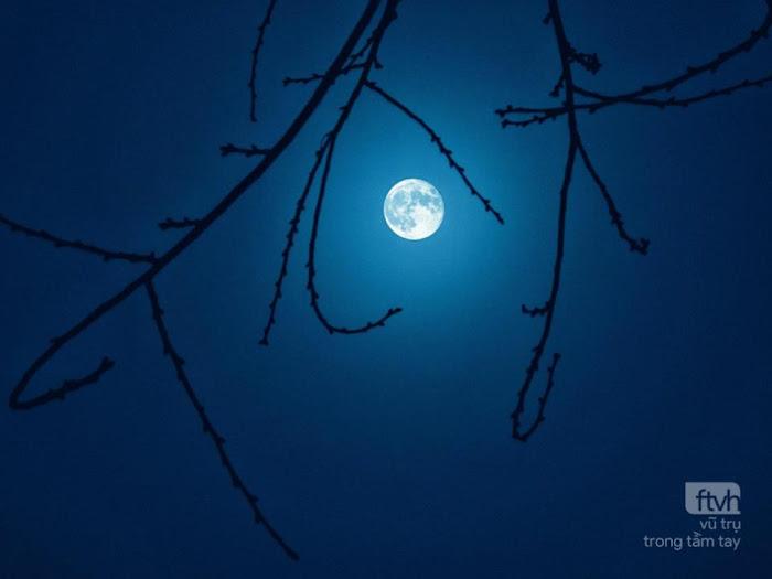 Trăng rằm trên bầu trời Sài Gòn. Hình ảnh: Tuấn Anh.