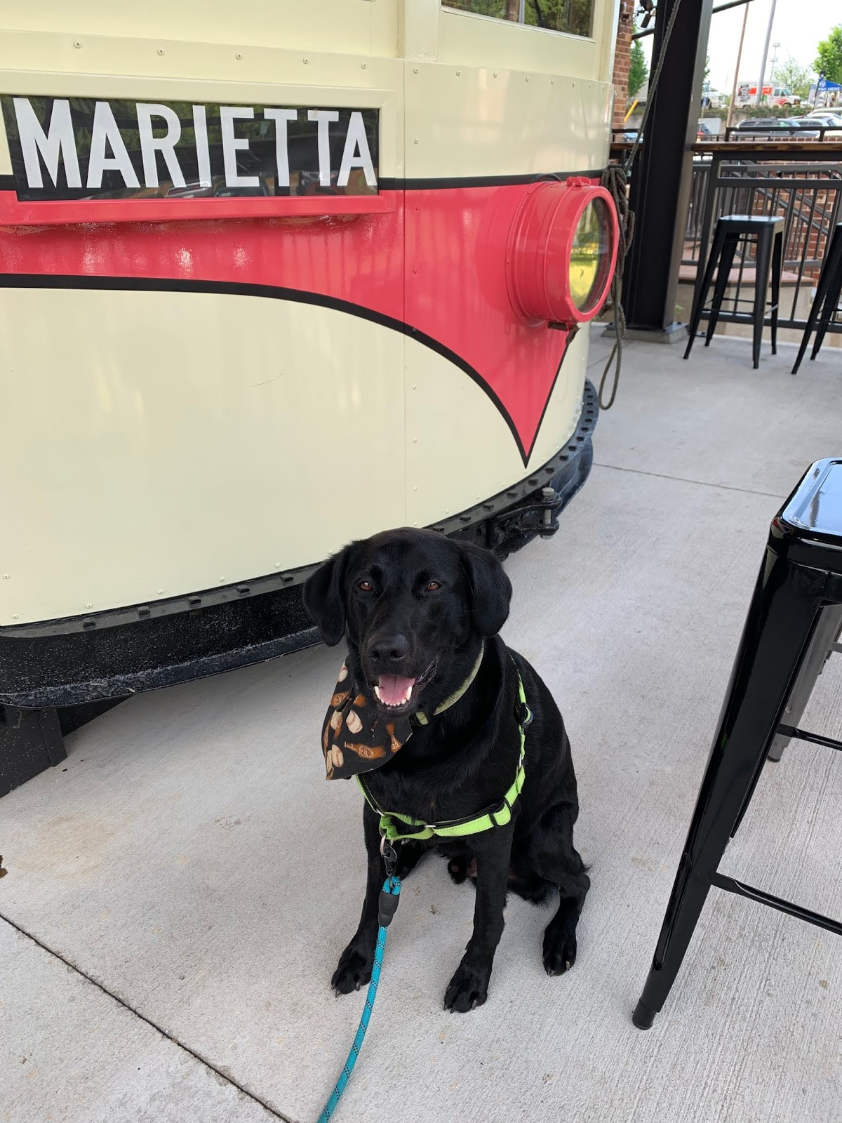 albus goes to see the marietta square market trolley car