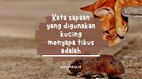 Kata Sapaan yang Digunakan Kucing Ketika Menyapa Tikus adalah