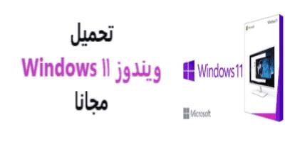 11 Windows