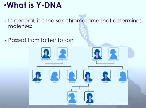 Image result for DNA determine father blogspot.com