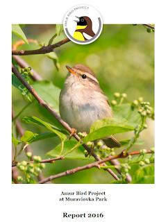 Amur Bird Project: Amur Bird Project Report 2016