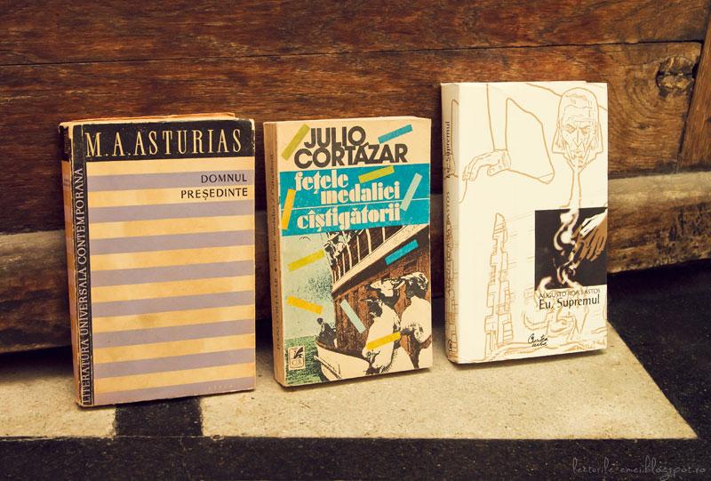 Achiziții literatură sud-americană