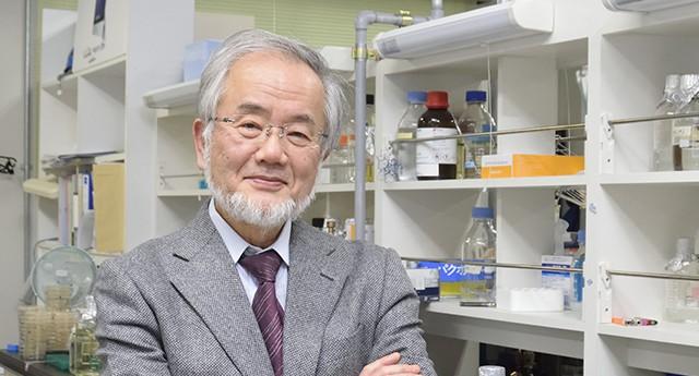 El biólogo japonés Yoshinori Ohsumi Premio Nobel de Medicina