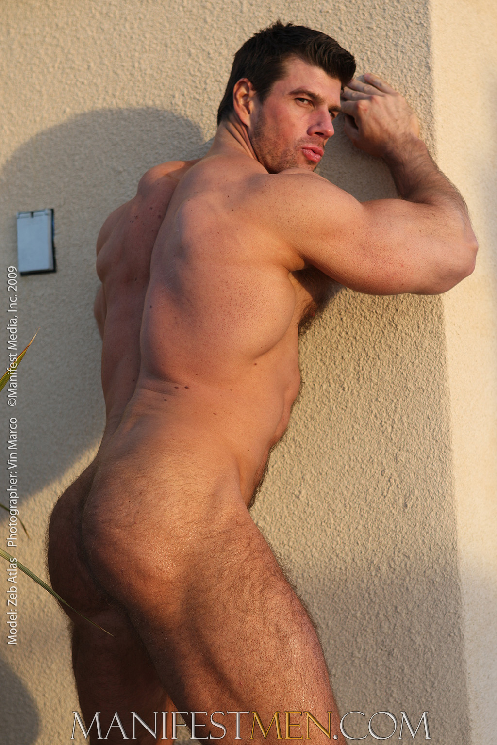 Goes nude hairy men gallery are not