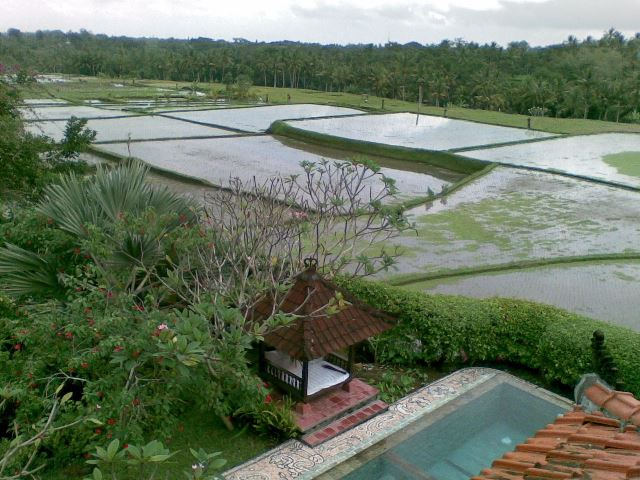 RICE FIELD VIEWS VILLA CLOSE TO GOA GAJAH - EAST UBUD - BALI