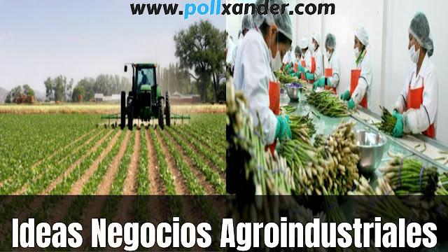 ideas de negocio agroindustriales