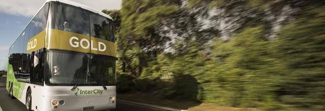 Cara tepat memilih sewa bus pariwisata