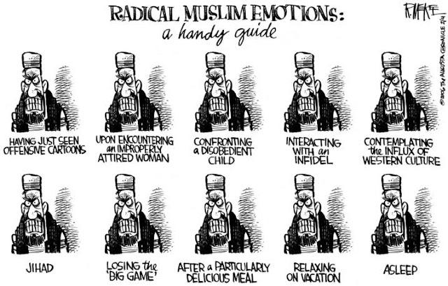 Radical Muslim Emotions - Handy Guide Cartoon