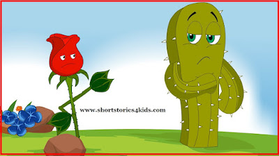 The Rose & The cactus