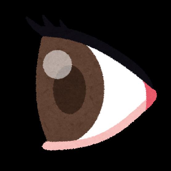 横から見た目のイラスト(人体)