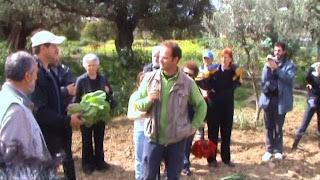 Συμβουλές για σπορά και καλλιέργεια λαχανικών στο χωράφι