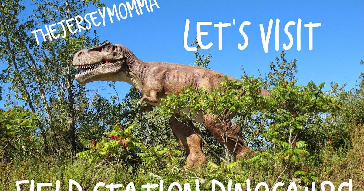 Dinosaur park nj coupons