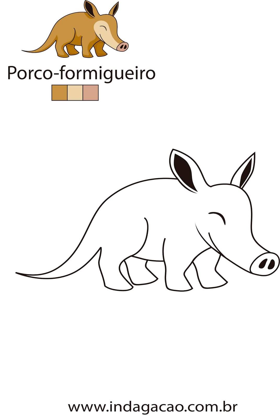 desenho-para-colorir-porco-formigueiro