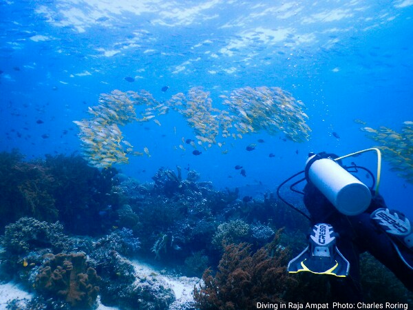 Indonesia's best dive site