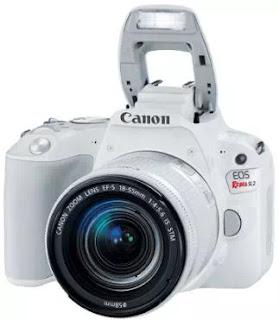 10 Kamera DSLR Terbaik Untuk Pemula-8