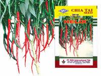 cabe merah keriting, cabai, cabai merah, jual benih cabe, toko pertanian, toko online, lmga agro