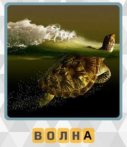 плавает черепаха и сверху накатывает волна