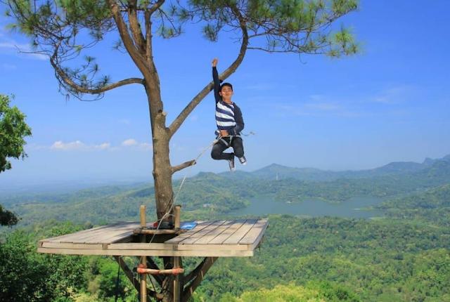 Wisata Kalibiru Kulon Progo Yogyakarta