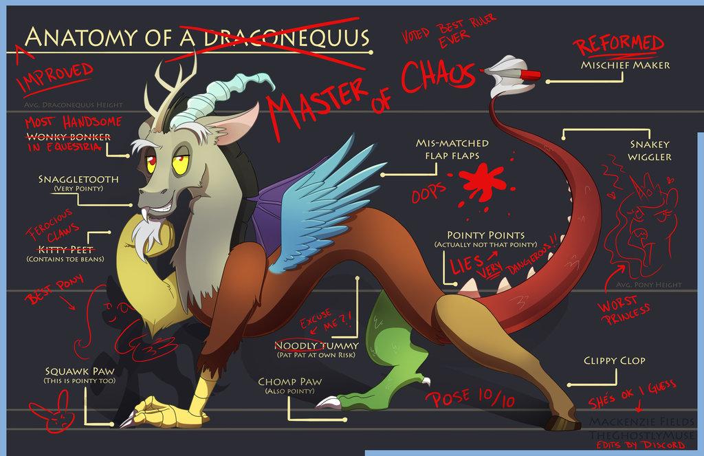 Equestria Daily - MLP Stuff!: Anatomy by Discord
