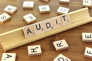 Functions Of Audit or Auditing