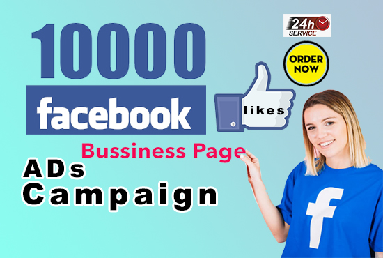 will create a facebook ad campaign with organic likes your page