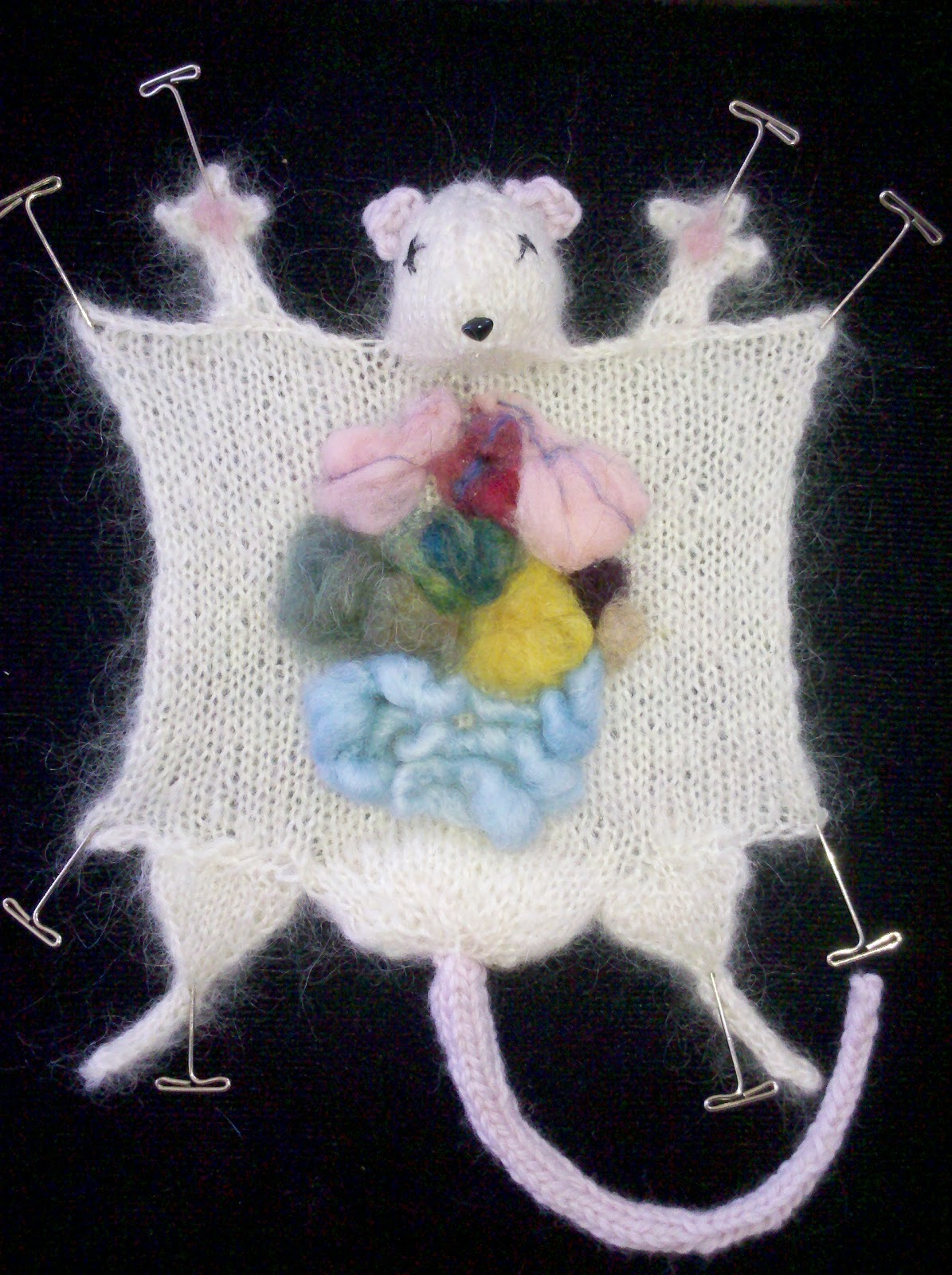 Around The World In 80 Plates Knitted Laboratory Rat