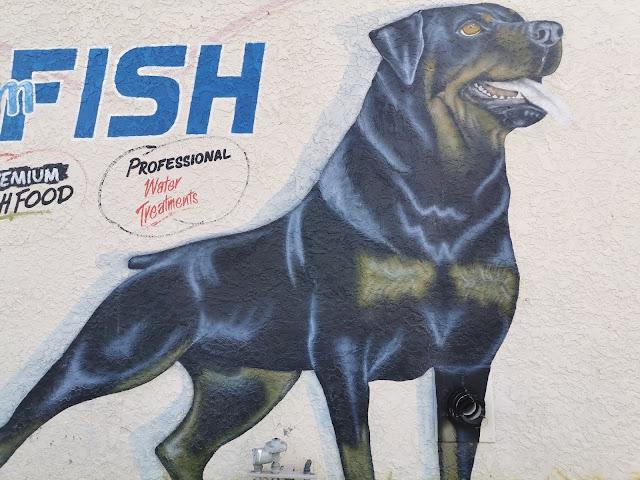 Goulburn Street Art | The Dog Spot by Lou