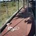 Bicicletas II