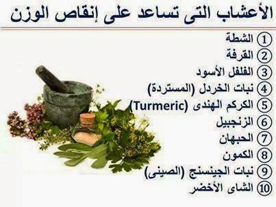 إنقاص الوزن بدون ريجيم,10 أعشاب للتنحيف (التخسيس) وإنقاص الوزن بدون ريجيم,أعشاب للتخسيس ,أعشاب التنحيف,الريجيم,الدايت,diet,weight loss,herbs for weight loss