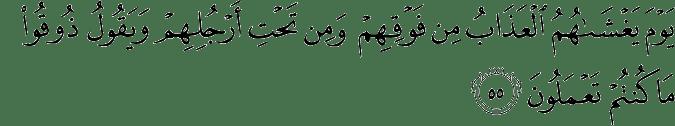 Surat Al 'Ankabut Ayat 55