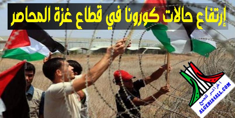 عدد الإصابات بكورونا في قطاع غزة