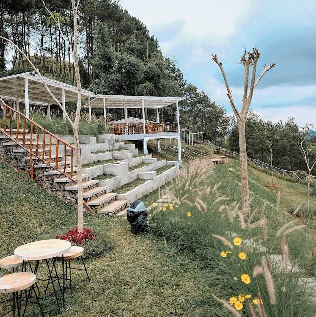 Cafe SINIE Garden & Space