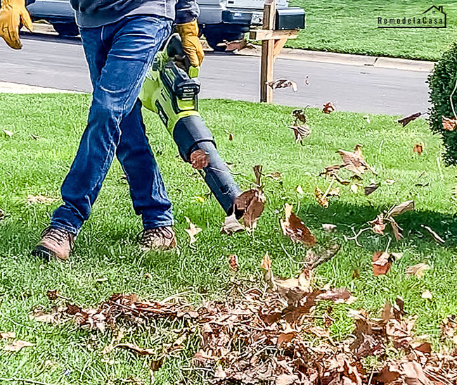 Blowing leaves with Ryobi Whisper series blower