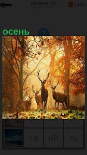 1100 слов в осеннем лесу стоят олени 26 уровень