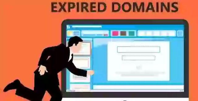 9 Important Factors Must Check Before Buying Expired Domains for Traffic (godaddy expired domains)