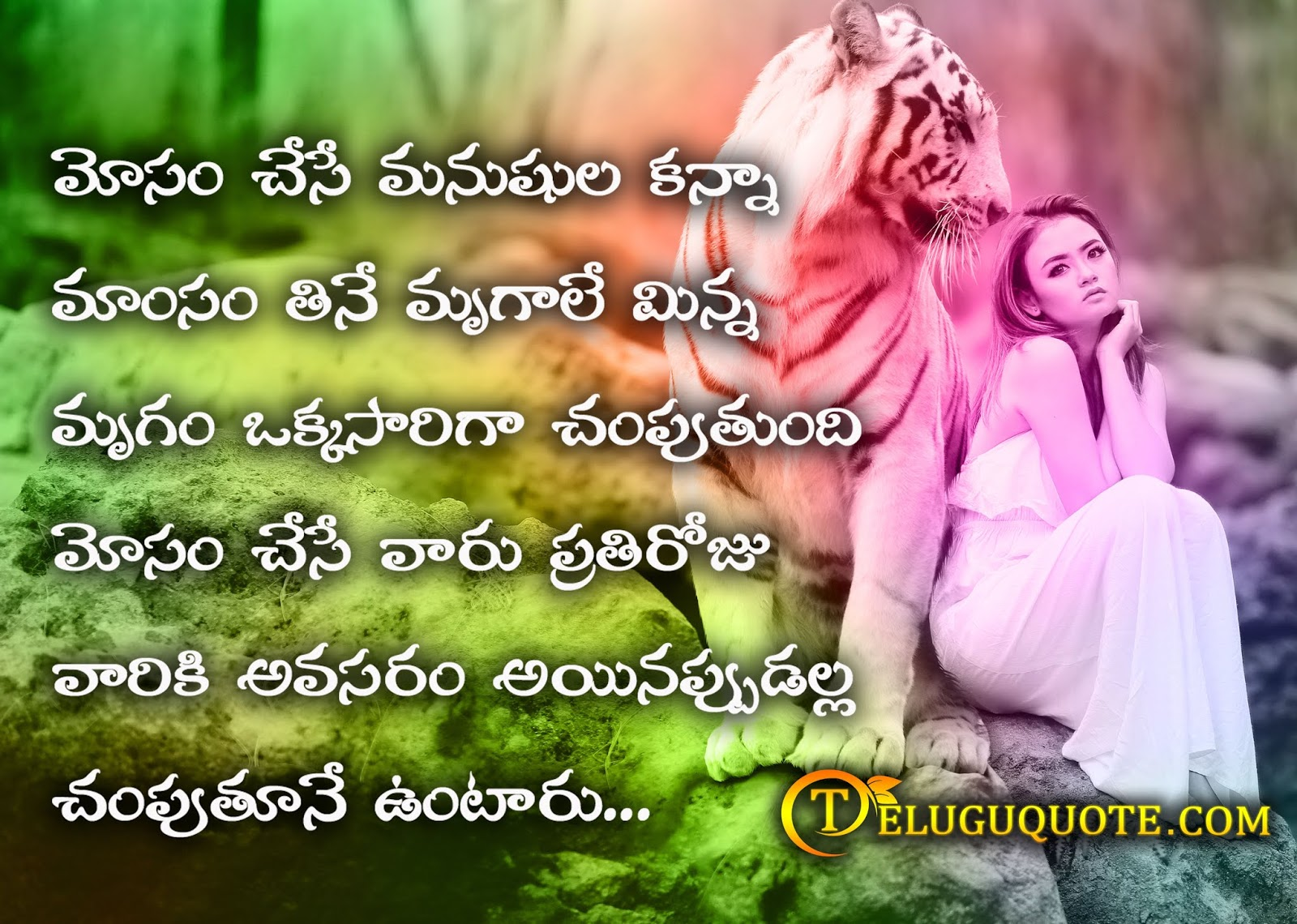 Love Koteshans
