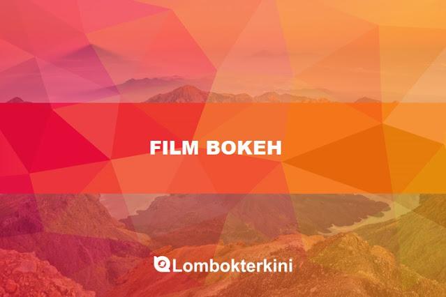 Film Bokeh Museum No Sensor MP4 Video