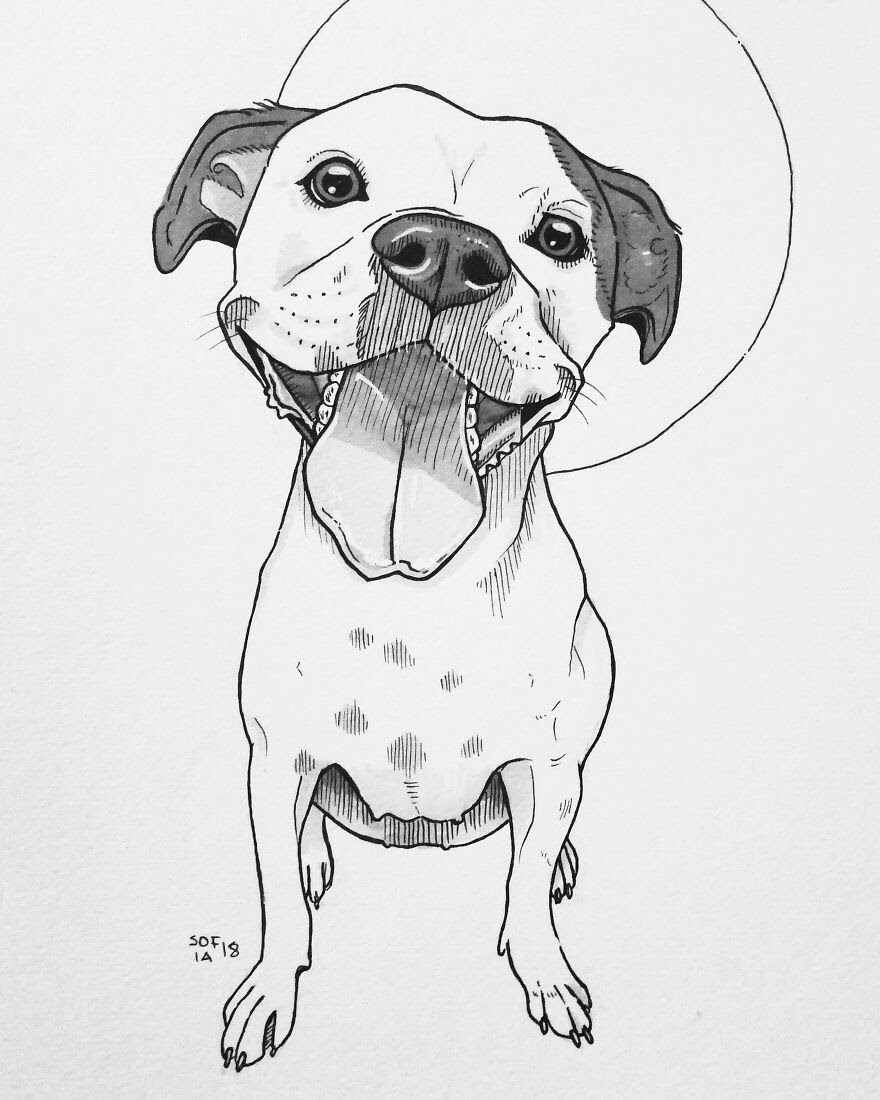 11-American-Staffordshire-Terrier-Mix-Sofia-Härö-Black-and-White-Ink-Animal-Drawings-www-designstack-co