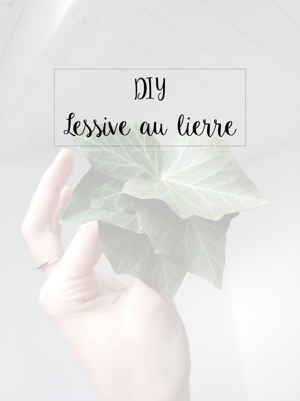 recette-lessive-au-lierre